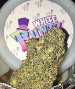 Grown by the Runtz crew in California, White Runtz is a cross of Gelato and Zkittlez. Noted for its stark white trichomes that make buds look white, White Runtz is a potent strain that will coat your senses with a sweet, fruity flavor profile for hours. The strain is grown only by the Runtz crew which means you're going to receive a quality product that is treated with care.