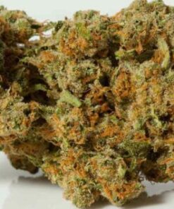 Durban Poison,OG Kush Marijuana Strain