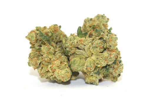 """OG Kush was first cultivated in Florida, in the early '90s when a strain from Northern California was crossed with a Hindu Kush plant from Amsterdam. The result was a hybrid with a unique terpene profile that boasts a complex aroma with notes of fuel, skunk, and spice. The genetic backbone of West Coast cannabis varieties, OG Kush arrived in Los Angeles in 1996 when Matt """"Bubba"""" Berger brought it (along with """"The Bubba,"""" which was later used to create the famed Bubba Kush) from Florida to legendary cultivator Josh D. Since then, OG Kush has become a worldwide staple used to create numerous famous strains like GSC and Headband. There are many different phenotypes of OG Kush, including Tahoe OG, SFV OG, and Ghost OG."""