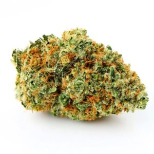 All Kush Strains, All Natural Blends of Cannabis, Benefits of medical Marijuana, Bubba Kush, How Medical Marijuana Works, All Sativa Strains, what are hybrid cannabis strains, Kush (Cannabis), Kush City, Kush Definition, Kush drug, Kush effects, Kush meaning, Kush names and pictures, Kush supply, Long term effects of marijuana's, Long term side effects of marijuana's, OG Kush Strain, Packwood Pre-Rolls, marijuana effects purple Kush, So what exactly is Kush, Synthetic, Cannabinoids, Synthetic Marijuana, what is Kush Cannabis, What is Marijuana