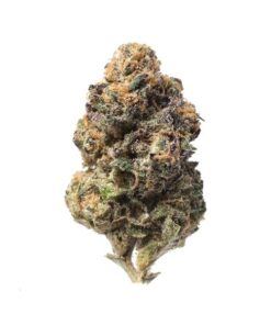 Blueberry Cookies is an indica-dominant hybrid created by crossing Blueberry Tahoe and Thin Mint GSC (f.k.a. Girl Scout Cookies). This strain's unique flavor is a mixture of roasted nuts, mint, and fresh blueberries, while the bouquet provides an earthier, berry-forward aroma. Blueberry Cookies tends to hit the consumer in the body with mid-level sedative effects that are relaxing without being cumbersome. The mental state is often heady and creative, offering a distraction from stress. Blueberry Cookies is often recommended for consumers contending with chronic pain, inflammation, and depression.