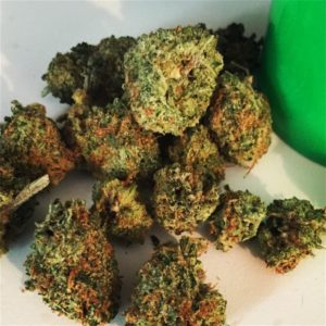 The Green Dream strain is certainly one to satisfy the taste buds of cannabis users who also happen to love green tea especially those who like their tea with a little hint of sweetness. This hybrid is widely known to possess a green tea-like taste mixed with some fruity tinge which, by the way, is said to be one of the reasons for its name. Now, if that is not enticing enough, here are some of Green Dream's attributes that any prospective user ought to know. Although there is not a lot of information available about this strain that is made available to the public, what is known so far about Green Dream should be enough reason for cannabis users to love it. Green Dream is believed to be a cross between Green Crack and Blue Dream. Hence, aside from its taste, one can easily tell why it is named as such based on its parent strains.