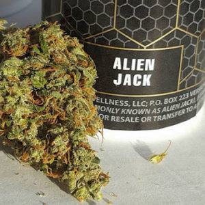 Alien Jack is a sativa-dominant hybrid that may give the user an uplifting, cerebral effect. This strain is often used to treat fatigue, depression, pain and stress. Alien OG & Chemdawg #4 (mixed with Jack Herer) are the parents of this strain.