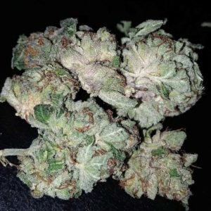 Among the most famous strains worldwide is White Widow, a balanced hybrid first bred in the Netherlands by Green House Seeds. A cross between a Brazilian sativa landrace and a resin-heavy South Indian indica, White Widow has blessed every Dutch coffee shop menu since its birth in the 1990s. Its buds are white with crystal resin, warning you of the potent effects to come. A powerful burst of euphoria and energy breaks through immediately, stimulating both conversation and creativity. White Widow's genetics have given rise to many other legends like White Russian, White Rhino, and Blue Widow. Still, many growers prefer cultivation of the original White Widow, which flowers in about 60 days indoors